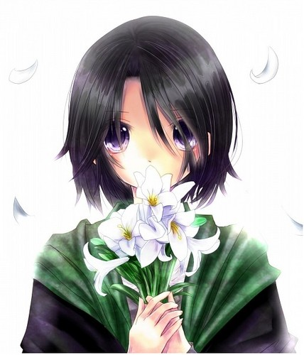 Harry Potter Anime wallpaper possibly with a bouquet called Severus Snape
