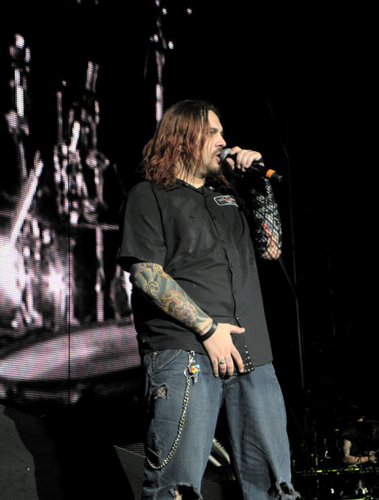 Seether wallpaper containing a concert entitled Shaun Morgan