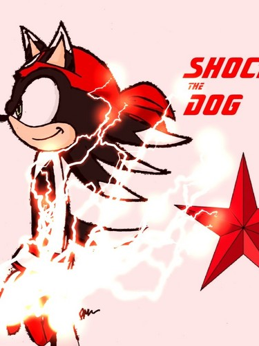 Shock the Dog (with electricity)