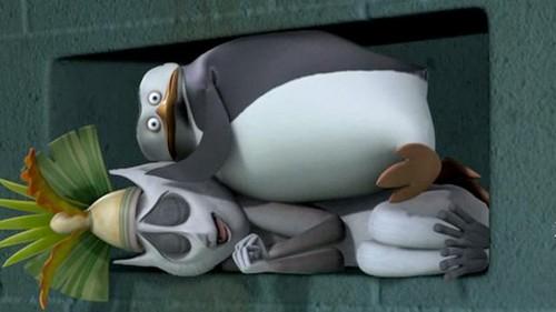 Skipper: The penguins of madagascar wallpaper titled Skipper