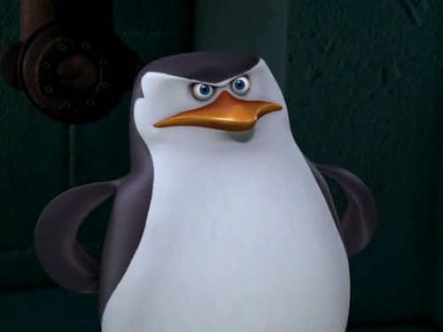 Skipper: The penguins of madagascar wallpaper entitled Some pictures of Skipper