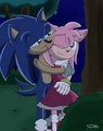 Sonic And Amy - amy-rose fan art