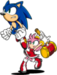 Sonic and Amy - sonic-the-hedgehog icon
