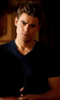 TV Male Characters wallpaper titled Stefan Salvatore