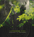 Catching Fire (fanmade) - the-hunger-games-movie fan art