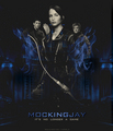 Mockingjay (fanmade) - the-hunger-games-movie fan art