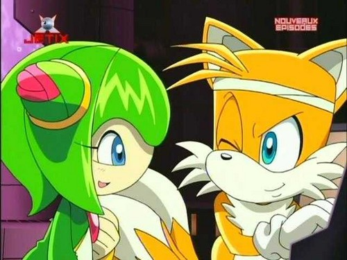 Tails and Cosmo - sonic-the-hedgehog Photo