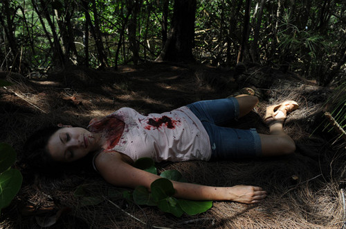 The Glades 3x06 {Old Times}
