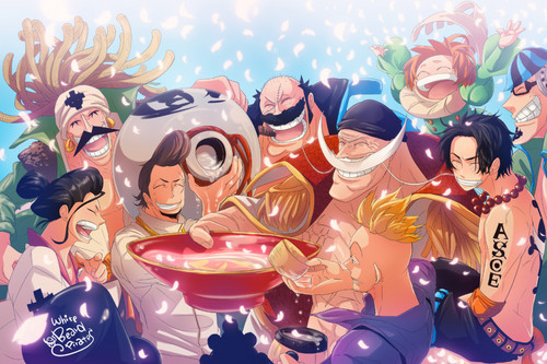 The good time of the Whitebeard Pirates