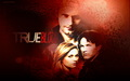true-blood - True Blood wallpapers wallpaper