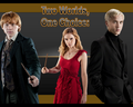 Two Worlds, One Choice - dramione wallpaper