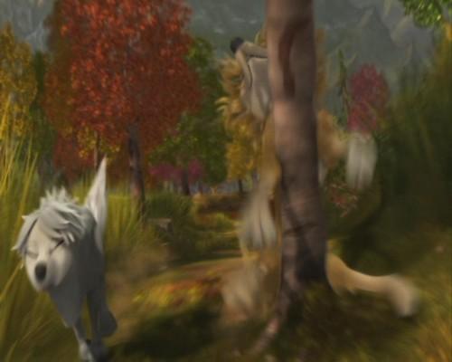 Wolves Pre-Teen