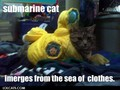 Yellow submarine - lol-cats photo