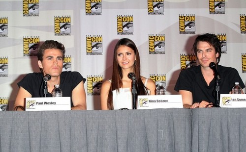 at the Comic-Con Panel