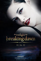 breaking dawn<333 - twilight-series photo