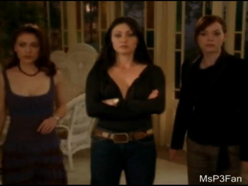 charmed phoebe prue paige - charmed Photo
