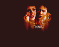 damon &amp; elena - damon-and-elena wallpaper