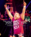 daniel bryan - wwe fan art