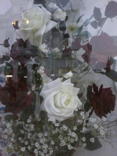 for ever Liebe the Blumen