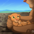 lion king - the-lion-king photo