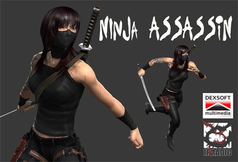ninjas of assassins