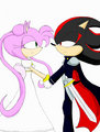 sailor rose (amy rose) and shadow