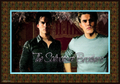 salvatore - damon-and-stefan-salvatore photo