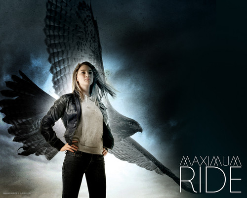 Maximum Ride 바탕화면 with long trousers called the final warning
