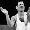 Freddie Mercury photo probably containing a portrait entitled  Freddie Mercury