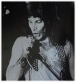 1973 - Live at Basingstoke College