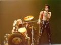 1979 live at the Ahoy Hall Rotterdam