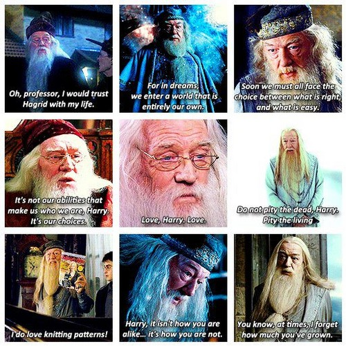 Albus Dumbledore's citations