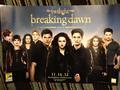 Breaking Dawn Part 2 Comic Con Poster