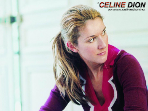 Celine Dion wallpaper probably containing a portrait titled Celine Dion