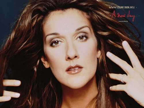 Celine Dion wallpaper with a portrait entitled Celine Dion
