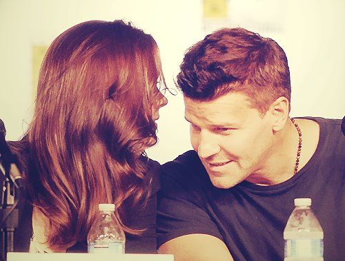 David & Emily at Comic Con 2012 - bones Photo