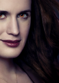 Esme - esme-cullen photo