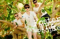 FOSTER THE PEOPLE ! - foster-the-people photo