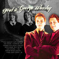 Fred and George Weasley - fred-and-george-weasley fan art