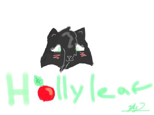 Hollyleaf