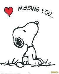 I will Miss you,Shahbano