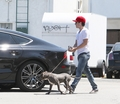 Josh taking Driver for a walk - July 17th