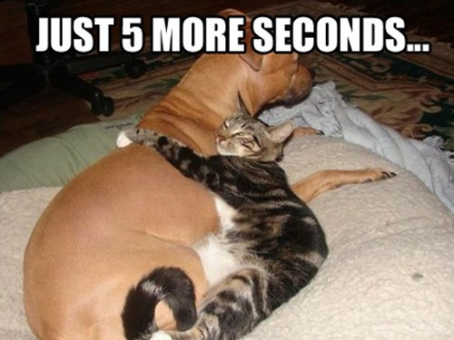 Just 5 もっと見る 秒 :P