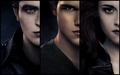 Life Forever - twilight-series fan art