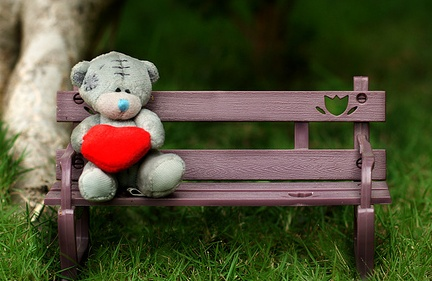 l'amour fond d'écran with a park bench entitled Miss toi Teddy ours