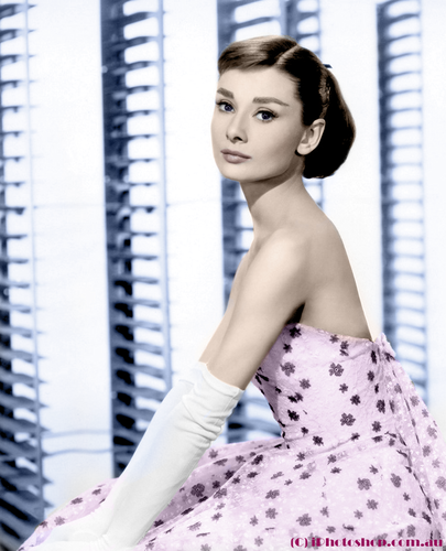 Our Personal Tribute to Audrey Hepburn