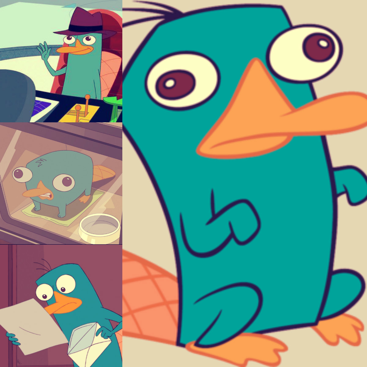 Phineas and Ferb Perry Collage