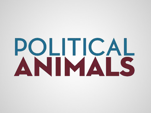Political Tiere - poster