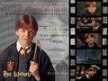 ronald-weasley - Ron <3 wallpaper
