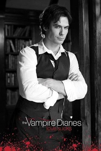 the vampire diaries wallpaper probably with a sign, a bouquet, and a business suit called S2 promo